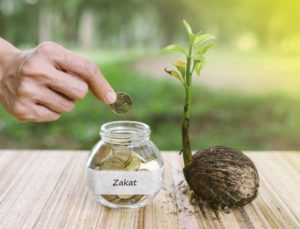 When to Give ZAKAT