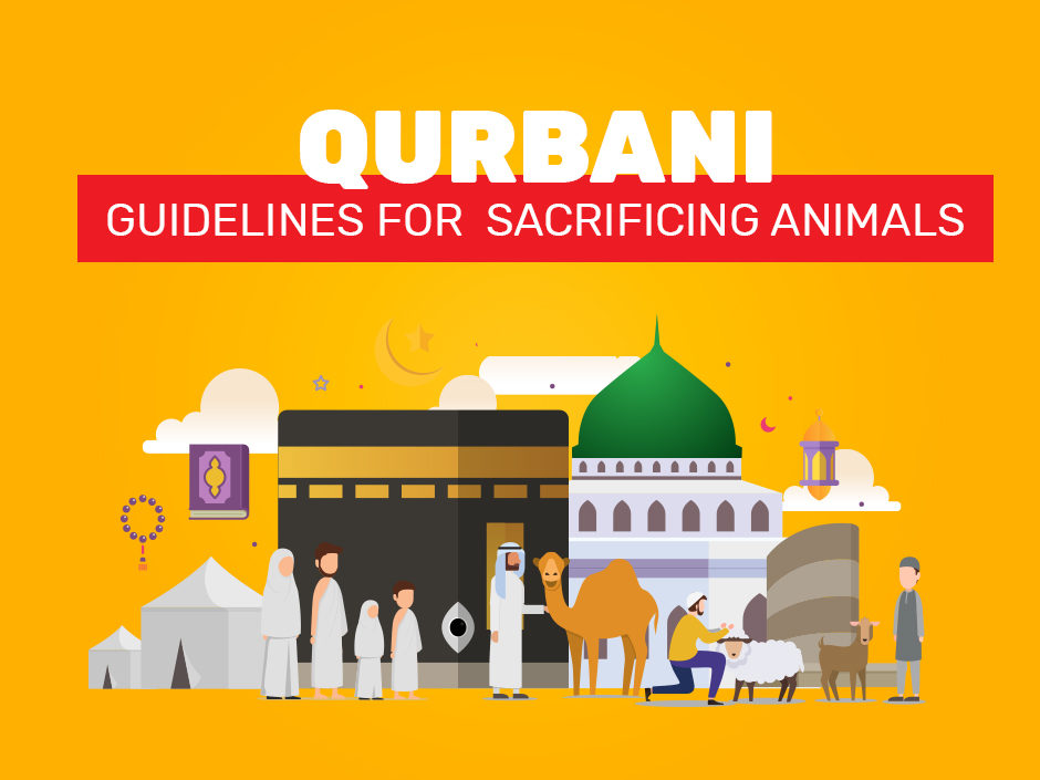 Qurbani Guidelines for Sacrificing an Animal for UK Residents